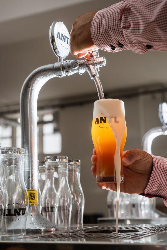 ANTL sör